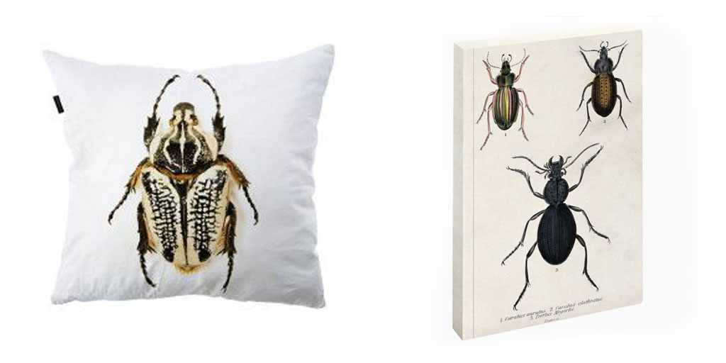Accessoires insectes