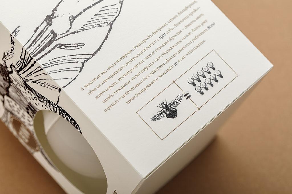 ampoules insecte