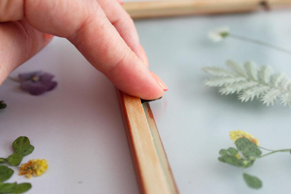 Un cadre herbier de fleurs séchées DIY